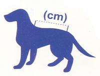 Größenbestimmung Hundemantel (www.aqua-pond24.de)