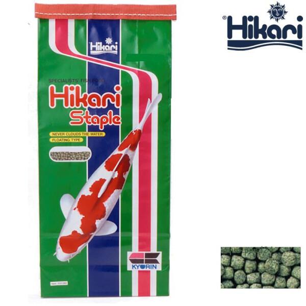 Hikari Koifutter Staple mini 10 kg 2-03020040